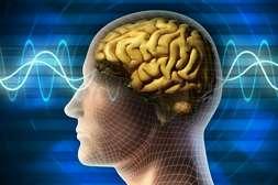 МозгТерапи действует без побочных эффектов.